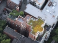 Lincoln-Park---Green-Roof-&-Rooftop-Patio-Deck-Construction4